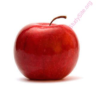 English to English Dictionary - Meaning of Apple in English is