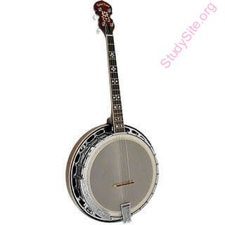 English to Telugu Dictionary - Meaning of Banjo in Telugu is
