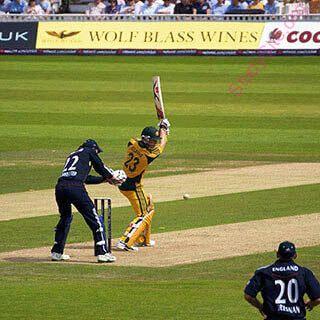 English To Punjabi Dictionary Meaning Of Cricket In Punjabi Is ਕ ਰ ਕਟ
