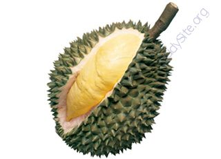 Durian (Oops! image not found)