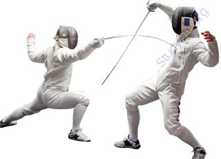Fencing (Oops! image not found)
