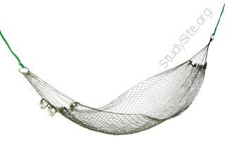 Hammock (Oops! image not found)