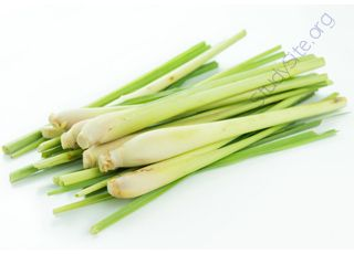 Lemon-grass (Oops! image not found)