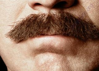 Mustache (Oops! image not found)