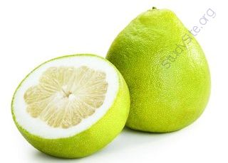 Pomelo (Oops! image not found)