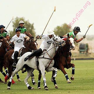 English To Punjabi Dictionary Meaning Of Polo In Punjabi Is ਪ ਲ