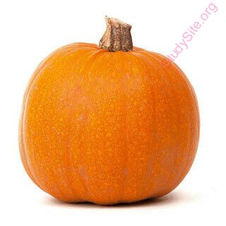 English to Punjabi Dictionary - Meaning of Pumpkin in