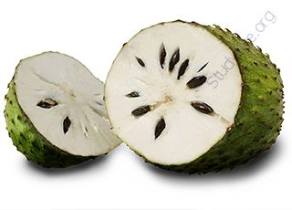 Soursop (Oops! image not found)