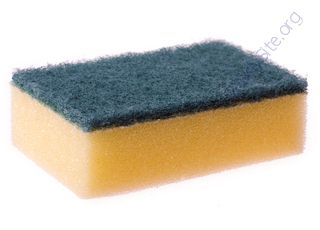 Sponge (Oops! image not found)
